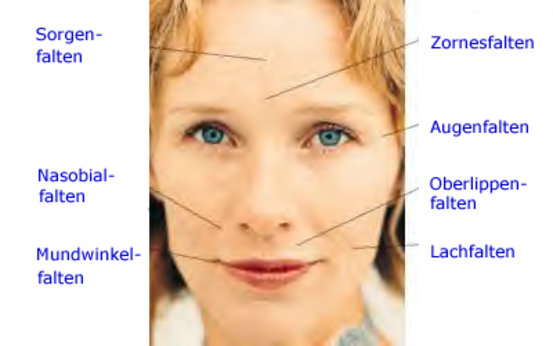 Botox-Behandlung in Berlin - BellaDerma
