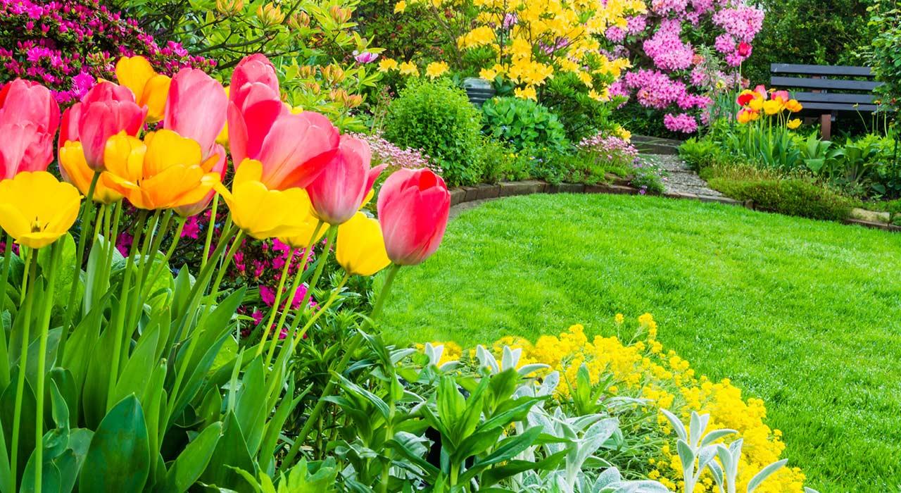 So wird aus Ihrem Garten mit wenig Aufwand Ihr kleines Paradies ...