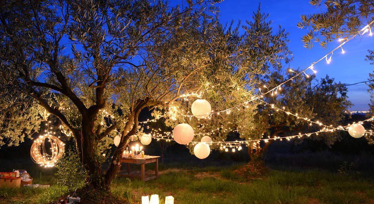 Hochzeit feiern mit kleinem budget unvergesslich sch n ratgeber magazin tipps von - Hochzeitsfeier im garten ...