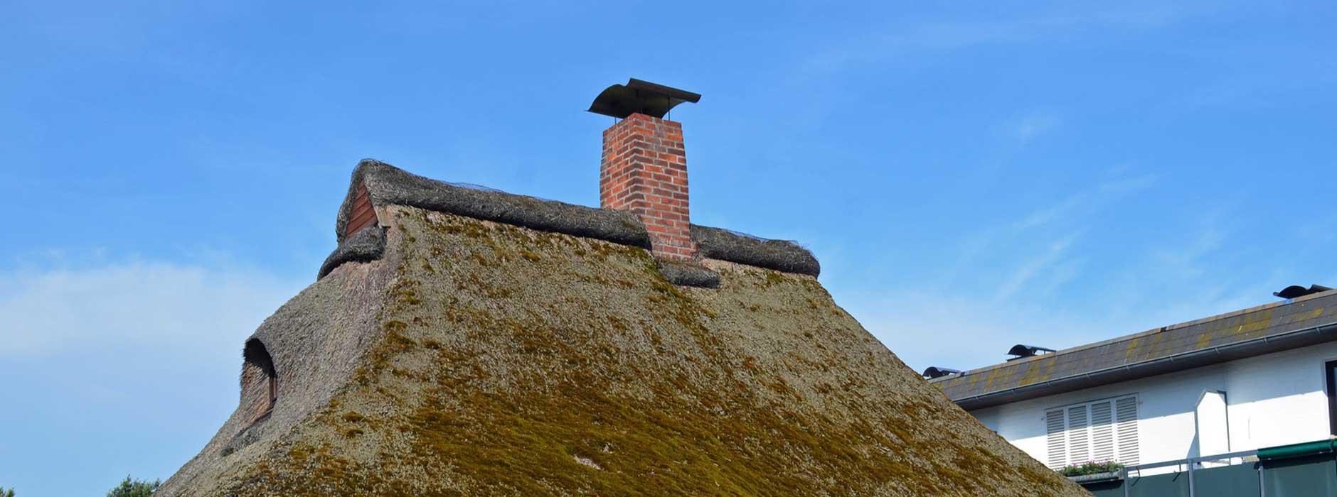Favorit Richtig bauen und dämmen: So hält ein Reetdach 40 Jahre – Ratgeber VW67